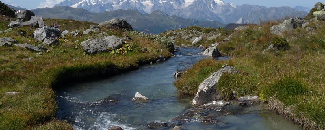Quiétude d'un torrent traversant un coin de paradis dans le Valais suisse (photo : M.De Vlaminck)
